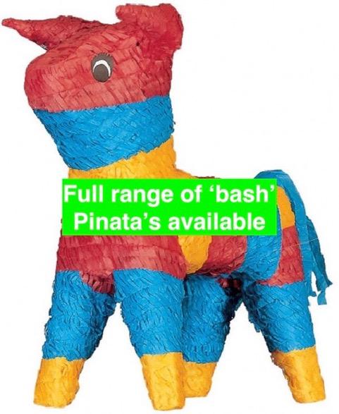 Bash Pinata