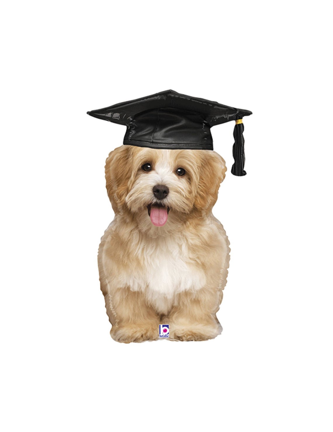 dog graduation balloon